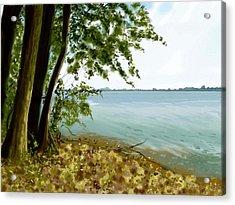 Acrylic Print featuring the painting Sandusky Bay by Shawna Rowe