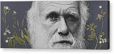 Sandwalk Wood- Charles Darwin.  Acrylic Print