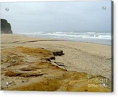 Sandy Beach Acrylic Print by Carla Carson