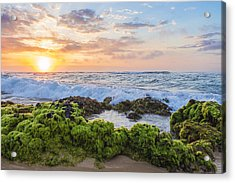 Acrylic Print featuring the photograph Sandy Beach Sunrise 2 by Leigh Anne Meeks