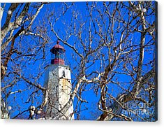 Sandy Hook Lighthouse Through Trees Acrylic Print by Olivier Le Queinec