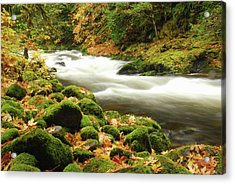Sandy River In Autumn, Welches, Oregon Acrylic Print