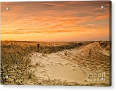 Sandy Road Leading To The Beach Acrylic Print by Sabine Jacobs