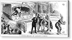 Sanger's Circus, 1884 Acrylic Print