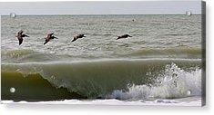 Sanibel Pelicans Acrylic Print by John Wartman