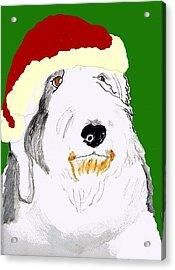 Santa Bailey Acrylic Print