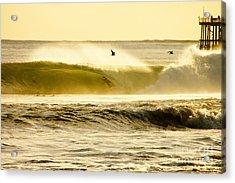 Santa Cruz Surfers Dream Acrylic Print by Paul Topp