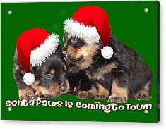 Santa Paws Is Coming To Town Christmas Greeting Acrylic Print by Tracey Harrington-Simpson