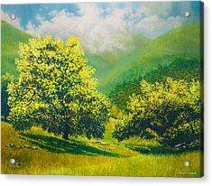 Santa Ynez Hills Acrylic Print