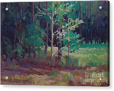 Saplings Acrylic Print by Virginia Dauth