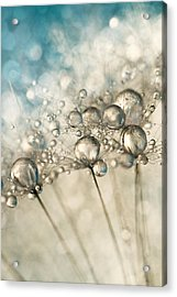 Sapphire And Silver Sparkle Acrylic Print