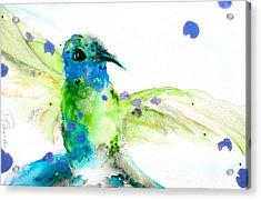 Sapphire Acrylic Print by Dawn Derman