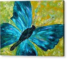 Sapphirine Butterfly Acrylic Print