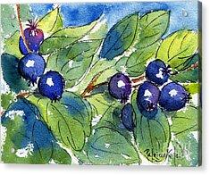 Saskatoon Berries Acrylic Print