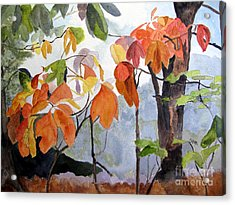 Sassafras Trees On The Ridge Acrylic Print