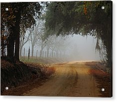 Satilla River Road Acrylic Print