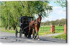 Saturday Buggy Ride Acrylic Print