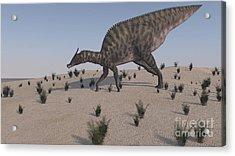 Saurolophus Walking Across A Barren Acrylic Print by Kostyantyn Ivanyshen