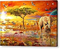 Savanna Pool Acrylic Print by Adrian Chesterman