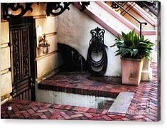 Savannah Design Acrylic Print by John Rizzuto