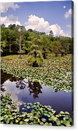 Saw Mill In July Acrylic Print by Lana Trussell