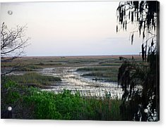 Sawgrass To Horizon  Acrylic Print