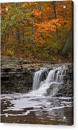 Sawmill Creek 2 Acrylic Print by Larry Bohlin