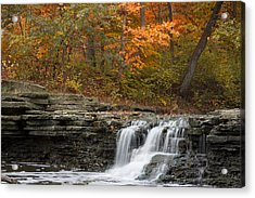 Sawmill Creek Acrylic Print by Larry Bohlin