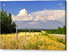 Acrylic Print featuring the photograph Sawmill Creek Road by Cathy Mahnke