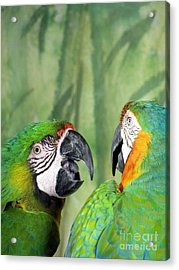 Say What? You Grounded Me For Flirting With Chick Named Daisy? Acrylic Print by Lingfai Leung
