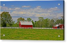 Acrylic Print featuring the photograph Sc Horse Farm by Andy Lawless