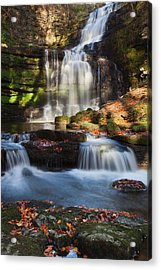 Scalber Force Acrylic Print