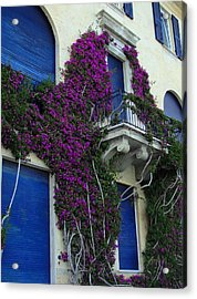 Acrylic Print featuring the photograph Scaling The Wall by Natalie Ortiz
