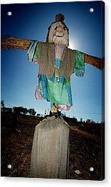 Scarecrow In Filed Acrylic Print