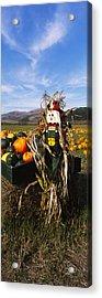Scarecrow In Pumpkin Patch, Half Moon Acrylic Print