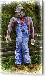 Scarecrow Acrylic Print by John Haldane