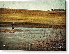 Scarecrow's Realm Acrylic Print