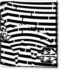 Scared Kitty Maze Acrylic Print by Yonatan Frimer Maze Artist
