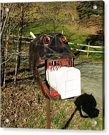 Acrylic Print featuring the photograph Scary Mailbox 2 by Sherman Perry