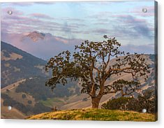 Scattered Clouds At Sunrise Acrylic Print by Marc Crumpler