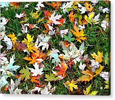 Scattered Leaves Acrylic Print by Mariola Szeliga