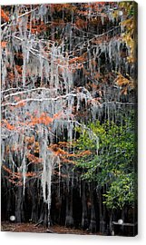 Scattered Rust Acrylic Print by Lana Trussell