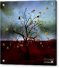 Acrylic Print featuring the photograph Scattered Thoughts by Chris Armytage