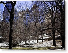 Scene From Central Park - Nyc Acrylic Print by Madeline Ellis