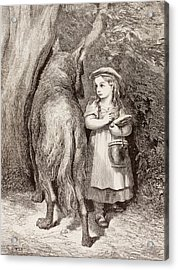 Scene From Little Red Riding Hood Acrylic Print by Gustave Dore