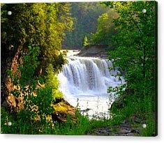 Scenic Falls Acrylic Print