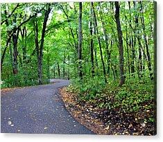 Scenic Minnesota 12 Acrylic Print