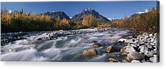 Scenic Of Granite Creek In Autumn Sc Acrylic Print by Calvin Hall