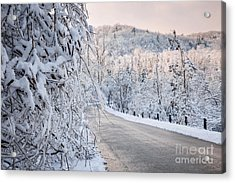 Scenic Road In Winter Forest Acrylic Print by Elena Elisseeva