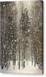 Scenic Snowfall Acrylic Print by Christina Rollo